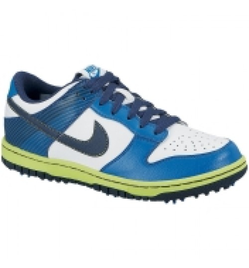 Nike Kids' Dunk NG Golf Shoe